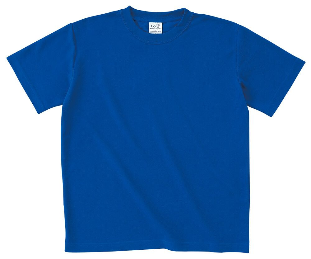 ロイヤルブルー(青色)#20