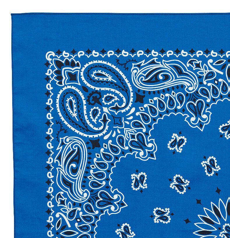 青色の柄アップ写真
